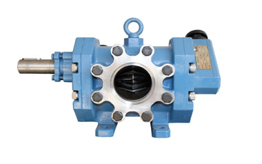 Rotary Twin Gear Pump Type RDMNS
